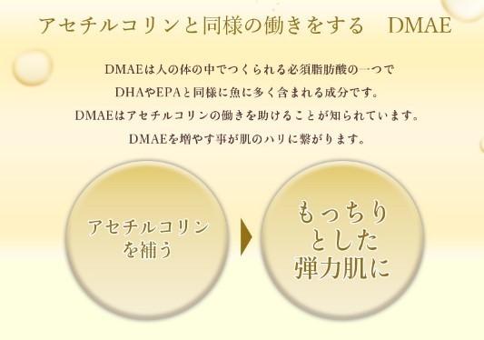 DMAEの写真